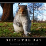 seize-the-squirelly-day
