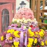 Great flower display at flower mart